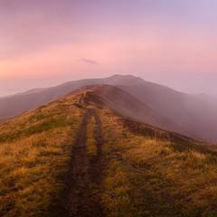 Боржавською стежкою