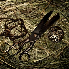 Столетние  ножницы