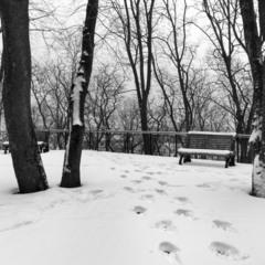 Останній день зими