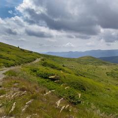 Карпатські стежки