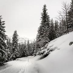 Зимові Татри