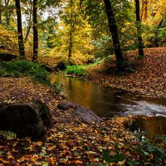 В Софиевке осень 2