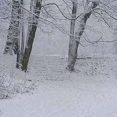 Сходи в зиму