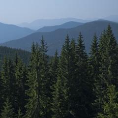 Сині гори
