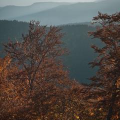 Осінній ранок в горах