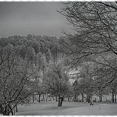 На утро старого Нового года...где то в Карпатах
