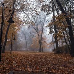 Осінній парк.