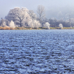 """Frosty morning on the lake"""