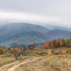 Про карпатську осінь