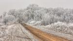 Шлях в морози