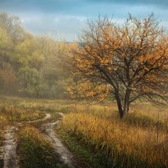 Осень-импрессионист..