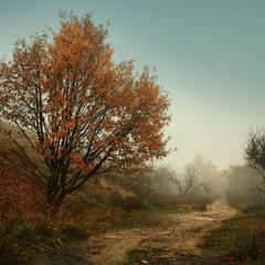Осень провожая..