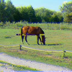 Horse (glitch #4)