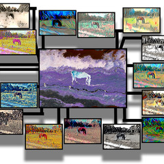 horse in artificial neural network