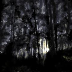 Рукотворный лес / Handmade forest
