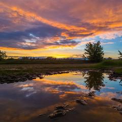 Коли світиться небо, багнюка також стає красивою...