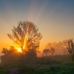 У ранковому світлі.......