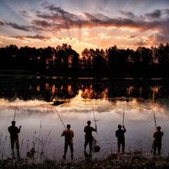 Риболовля на світанку
