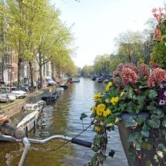 Весняний Амстердам