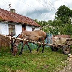 У далекому селі...