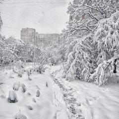 Раптова зима у місті...