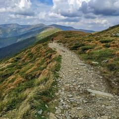 Гірська стежка