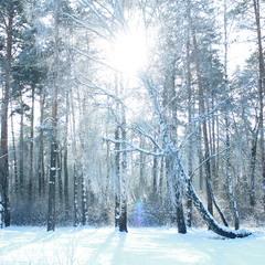 Зимовий день