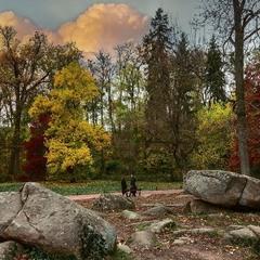 Парковый ландшафт