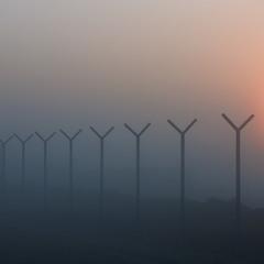 Геометрия тумана