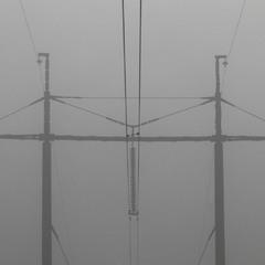 Вийшов монстр із туману