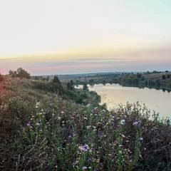 Про будяки , ставок та останній захід цього літа...