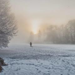 зимнее туманное утро