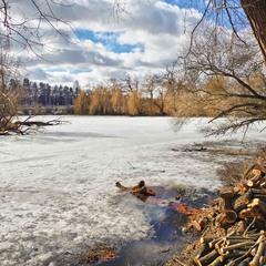 на берегу заснеженного озера