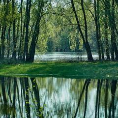 Река Десна весенняя
