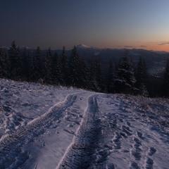 Зимній вечір у Карпатах