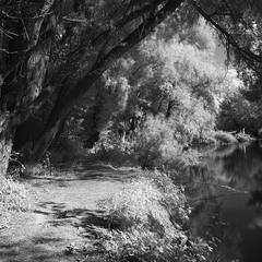 Сонячним днем на річці Стир