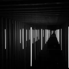 Люмінесцентні лампи по вертикалі
