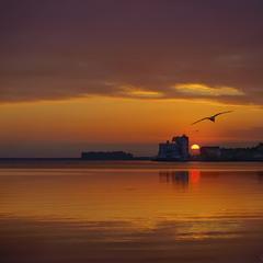 Назустріч світанку.