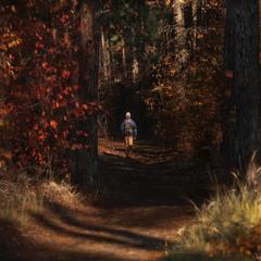 Шлях крізь осінь ...
