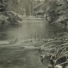 Перший мороз останнього місяця року.