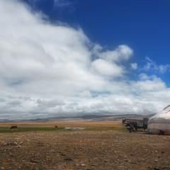 Предгорная степь...За горами Монголия.....