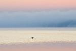 Пробуждение Алмазного озера