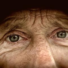 Глаза старого друга