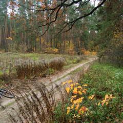 Осенний вело-привал