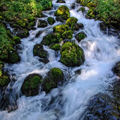 Чудо воды
