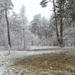 Зимнее нападение в марте
