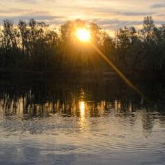 Рассвет над Десной, Пирново.