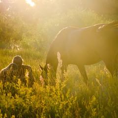 Двое и конь