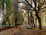 Осінь в місті