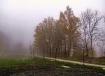 Туман у жовтні